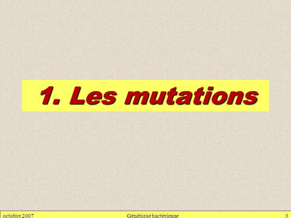 octobre 2007Génétique bactérienne3 1. Les mutations
