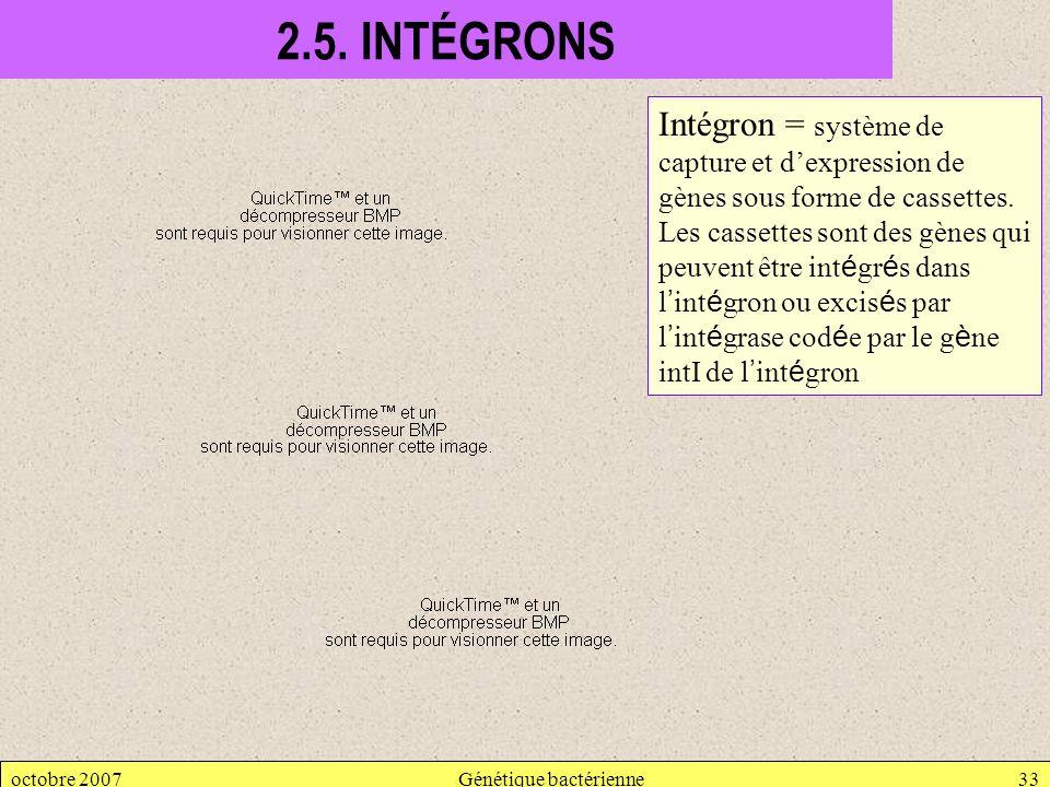 octobre 2007Génétique bactérienne33 2.5. INTÉGRONS Intégron = système de capture et dexpression de gènes sous forme de cassettes. Les cassettes sont d