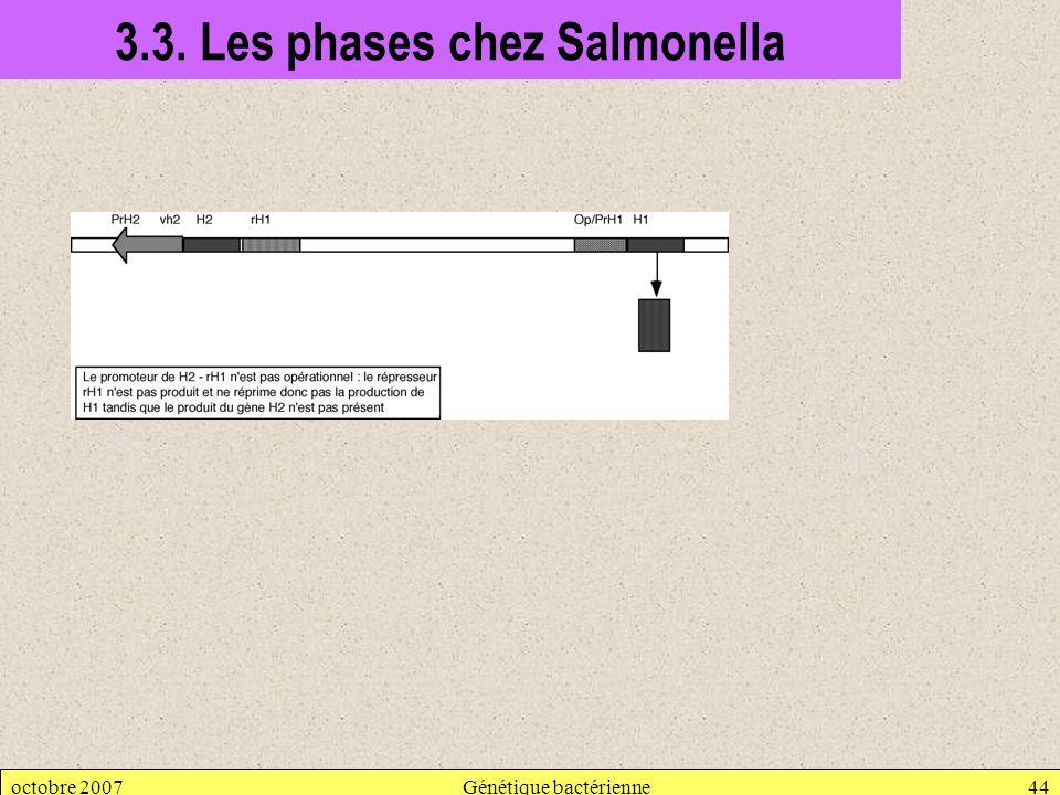 octobre 2007Génétique bactérienne44 3.3. Les phases chez Salmonella
