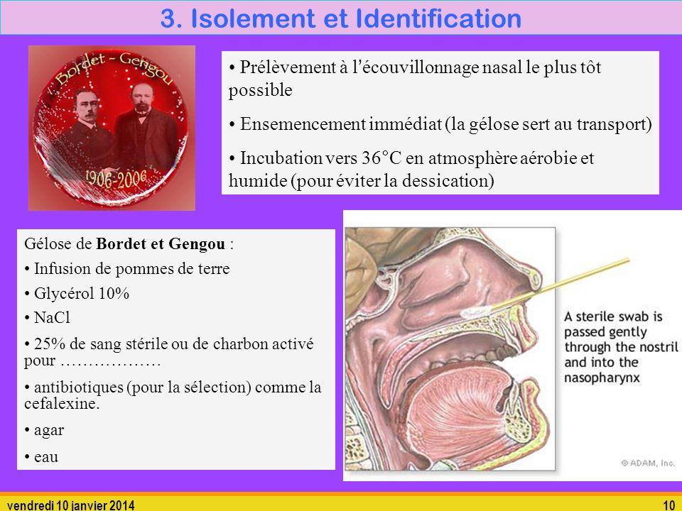 vendredi 10 janvier 201410 3. Isolement et Identification Gélose de Bordet et Gengou : Infusion de pommes de terre Glycérol 10% NaCl 25% de sang stéri