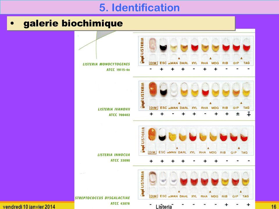 vendredi 10 janvier 2014Listeria16 5. Identification galerie biochimique