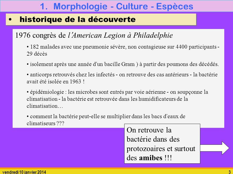 vendredi 10 janvier 20143 1.Morphologie - Culture - Espèces historique de la découverte 1976 congrès de lAmerican Legion à Philadelphie 182 malades av
