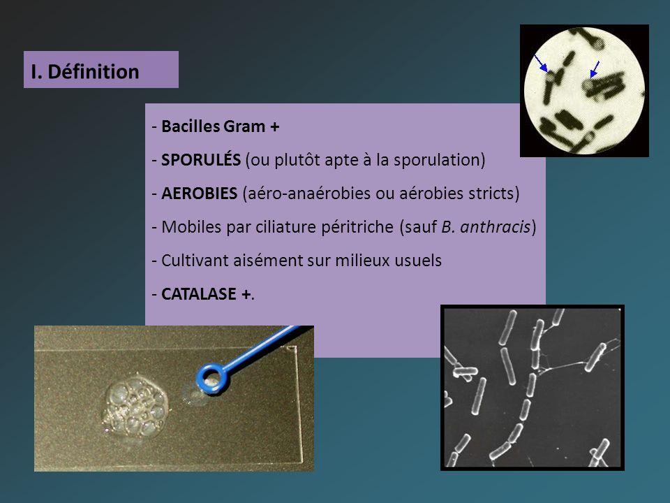 I. Définition - Bacilles Gram + - SPORULÉS (ou plutôt apte à la sporulation) - AEROBIES (aéro-anaérobies ou aérobies stricts) - Mobiles par ciliature