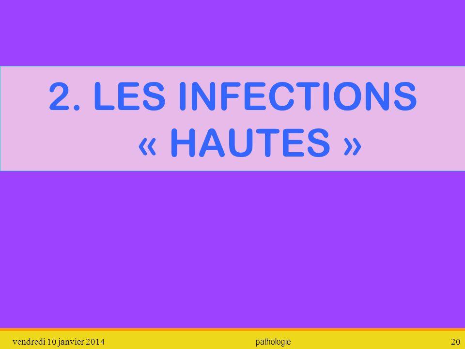 vendredi 10 janvier 2014 pathologie 21 2.1.