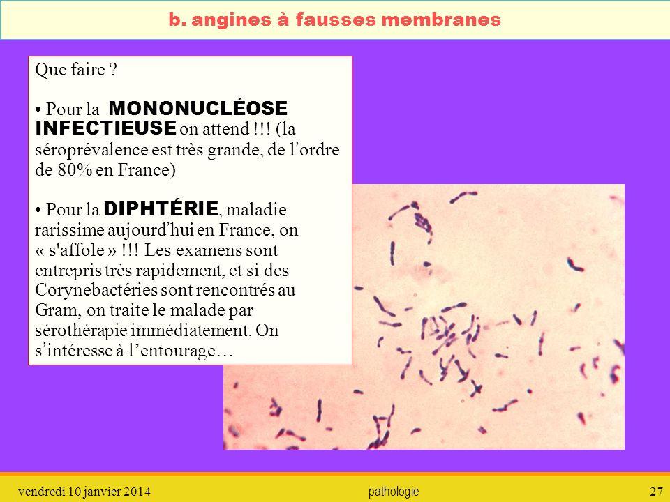 vendredi 10 janvier 2014 pathologie 28 c.