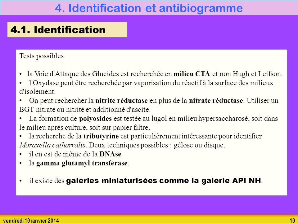 vendredi 10 janvier 201410 4. Identification et antibiogramme Tests possibles la Voie d'Attaque des Glucides est recherchée en milieu CTA et non Hugh