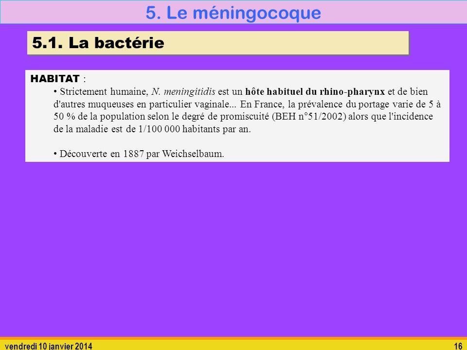 vendredi 10 janvier 201416 5. Le méningocoque 5.1. La bactérie HABITAT : Strictement humaine, N. meningitidis est un hôte habituel du rhino-pharynx et