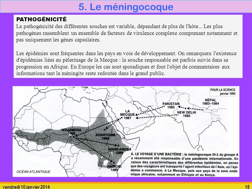 vendredi 10 janvier 201418 5. Le méningocoque 5.1. La bactérie PATHOGÉNICITÉ La pathogénicité des différentes souches est variable, dépendant de plus