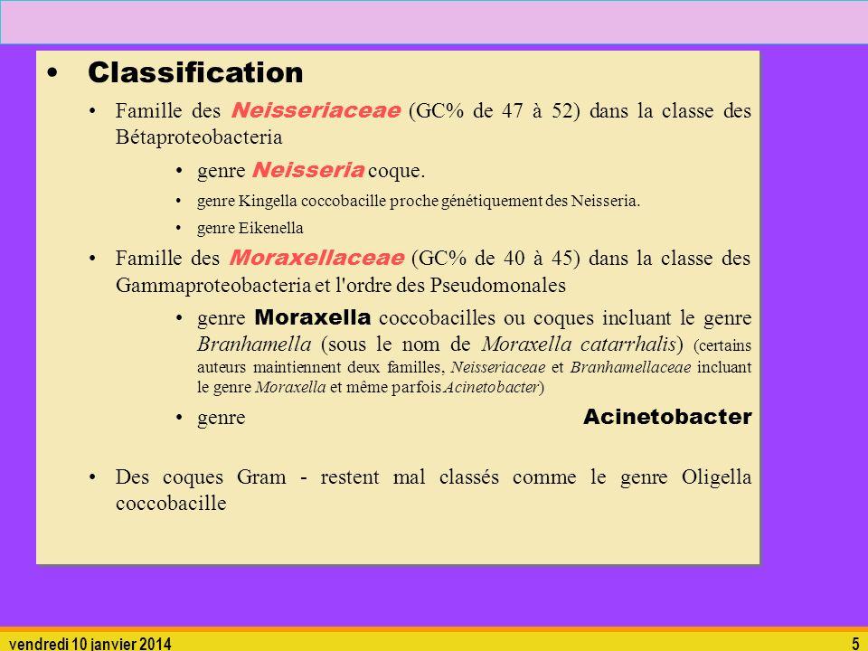 vendredi 10 janvier 20145 Classification Famille des Neisseriaceae (GC% de 47 à 52) dans la classe des Bétaproteobacteria genre Neisseria coque. genre