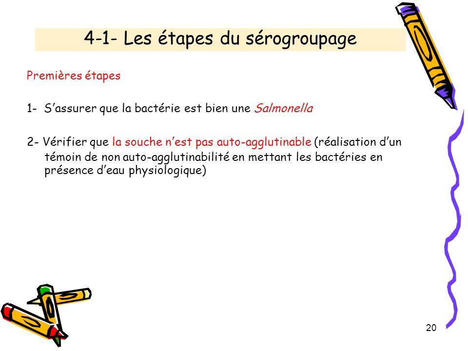 4-1- Les étapes du sérogroupage Premières étapes 1- Sassurer que la bactérie est bien une Salmonella 2- Vérifier que la souche nest pas auto-agglutina