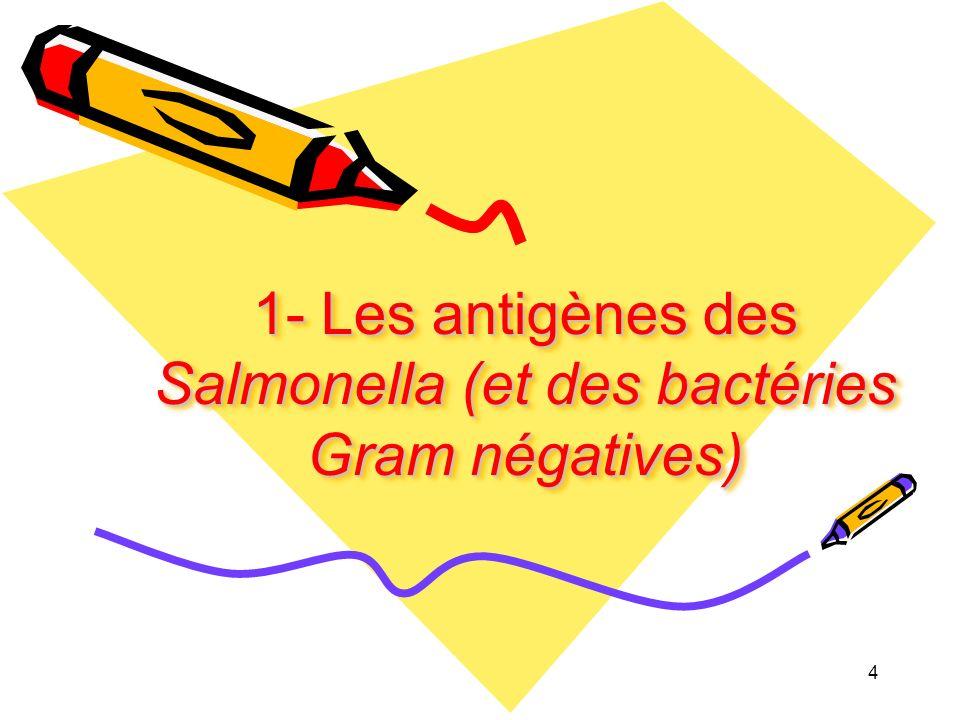 1- Les antigènes des Salmonella (et des bactéries Gram négatives) 4
