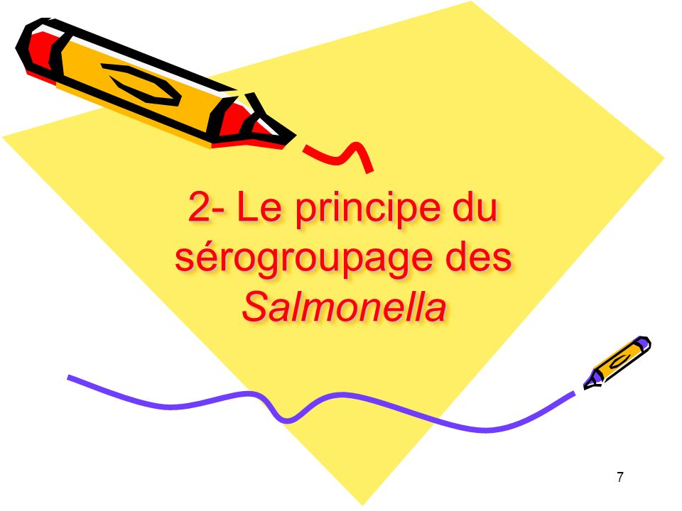 2- Le principe du sérogroupage des Salmonella 7