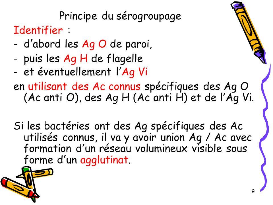 Principe du sérogroupage Identifier : -dabord les Ag O de paroi, -puis les Ag H de flagelle -et éventuellement lAg Vi en utilisant des Ac connus spéci