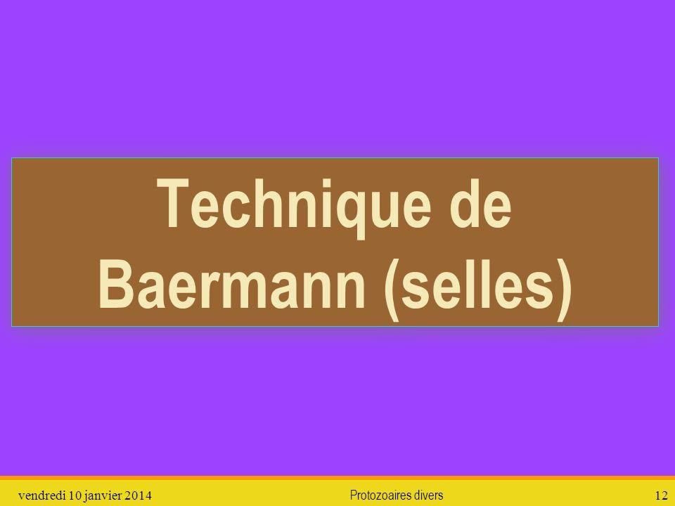 vendredi 10 janvier 2014Protozoaires divers12 Technique de Baermann (selles)