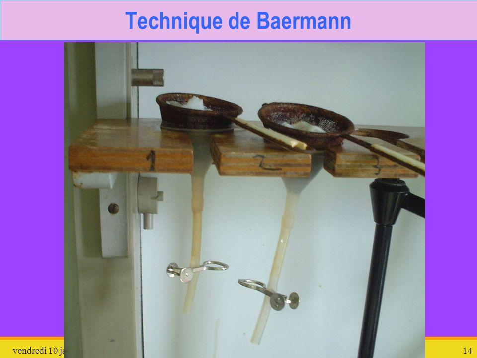 vendredi 10 janvier 2014Protozoaires divers14 Technique de Baermann