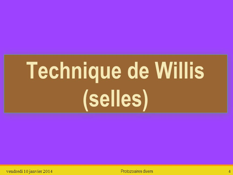vendredi 10 janvier 2014Protozoaires divers4 Technique de Willis (selles)