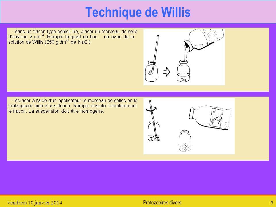vendredi 10 janvier 2014Protozoaires divers5 Technique de Willis