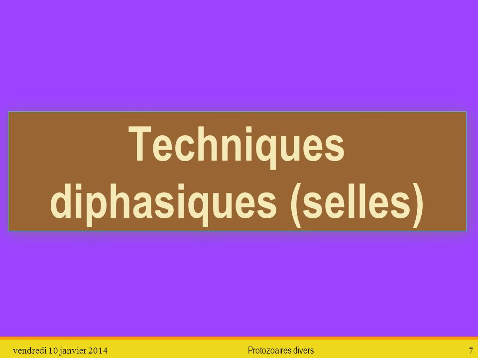 vendredi 10 janvier 2014Protozoaires divers8 Techniques diphasiques