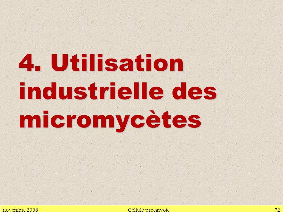 novembre 2006Cellule procaryote72 4. Utilisation industrielle des micromycètes