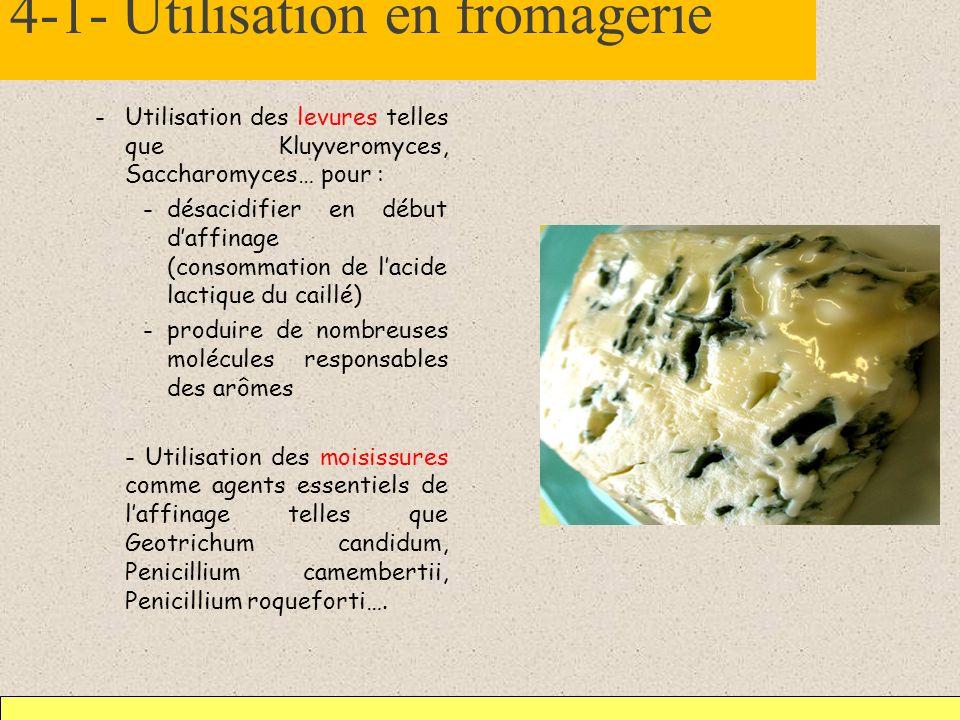 4-1- Utilisation en fromagerie -Utilisation des levures telles que Kluyveromyces, Saccharomyces… pour : -désacidifier en début daffinage (consommation