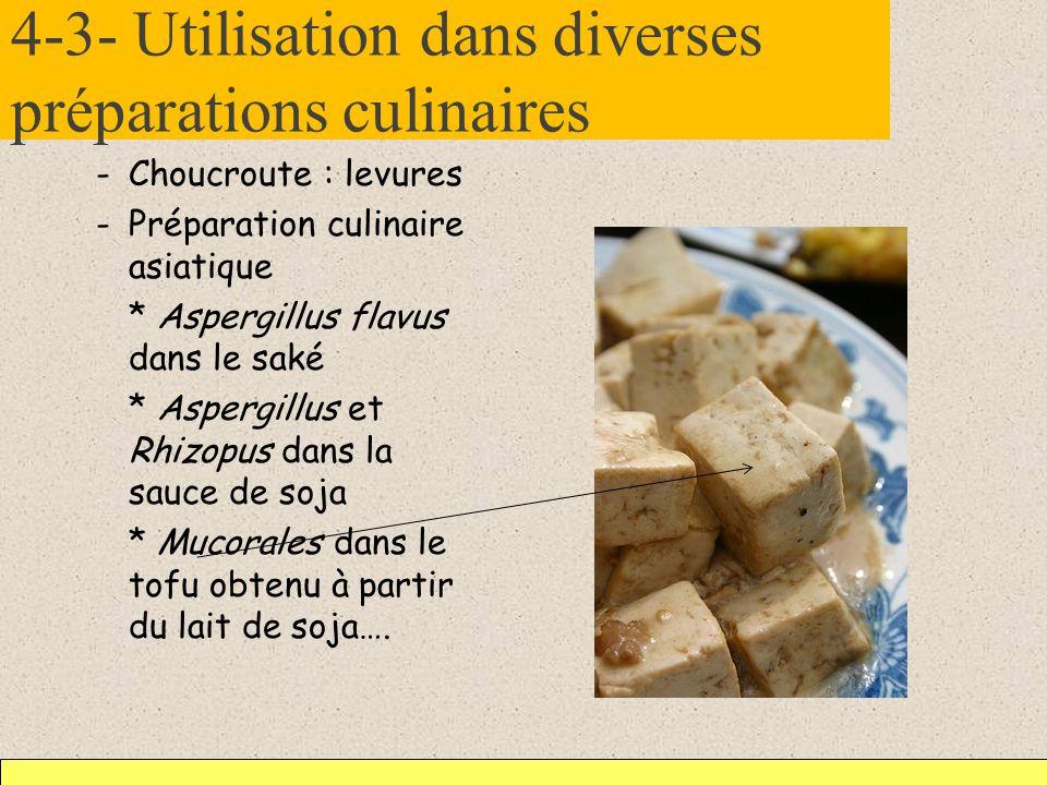 4-3- Utilisation dans diverses préparations culinaires -Choucroute : levures -Préparation culinaire asiatique * Aspergillus flavus dans le saké * Aspe