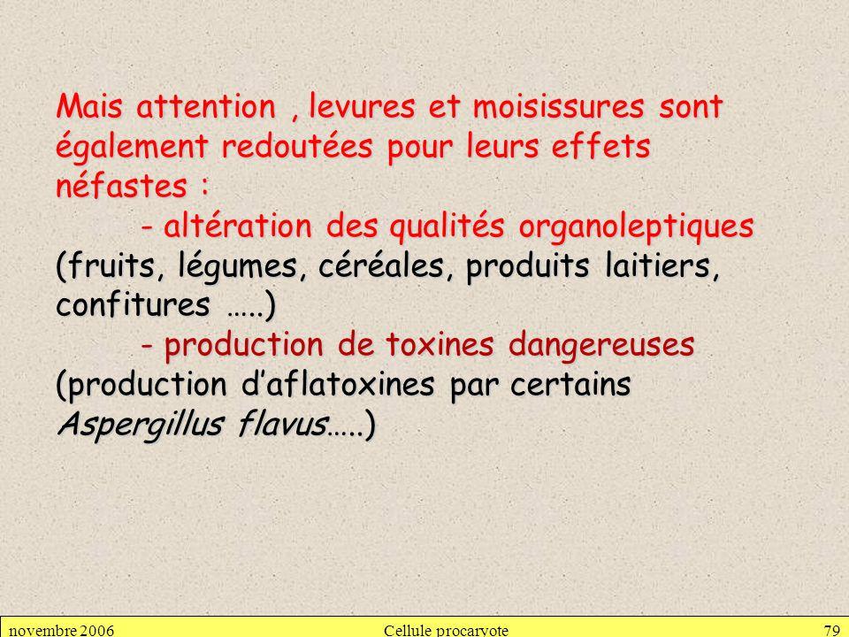 novembre 2006Cellule procaryote79 Mais attention, levures et moisissures sont également redoutées pour leurs effets néfastes : - altération des qualit