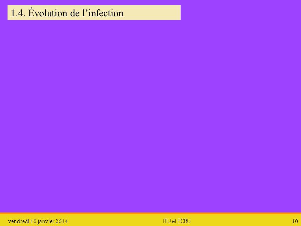 vendredi 10 janvier 2014 ITU et ECBU 10 1.4. Évolution de linfection