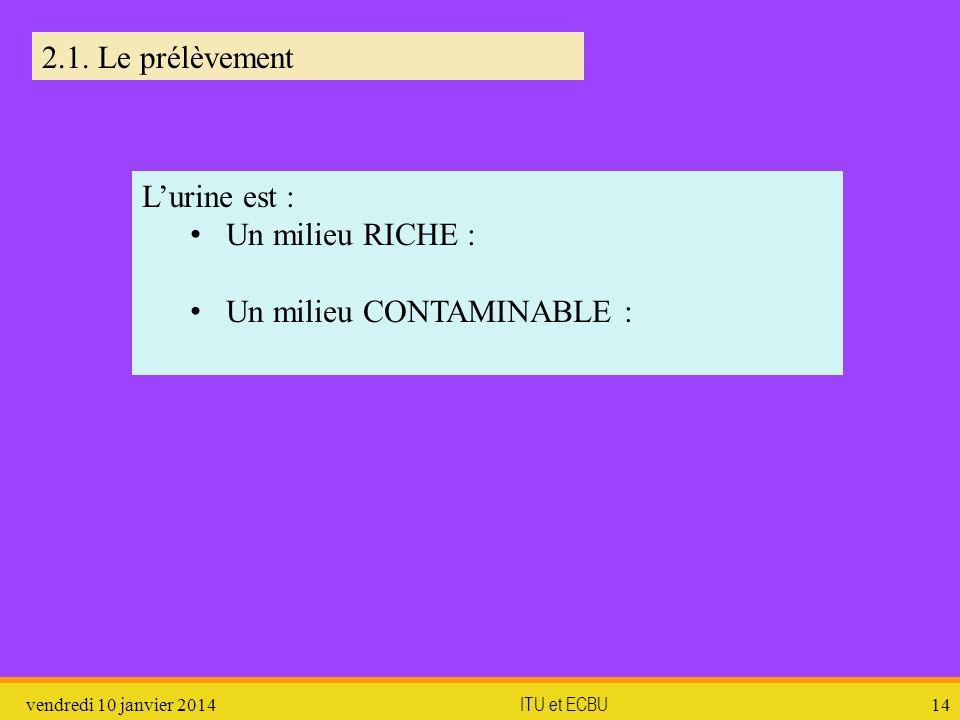 vendredi 10 janvier 2014 ITU et ECBU 14 2.1. Le prélèvement Lurine est : Un milieu RICHE : Un milieu CONTAMINABLE :