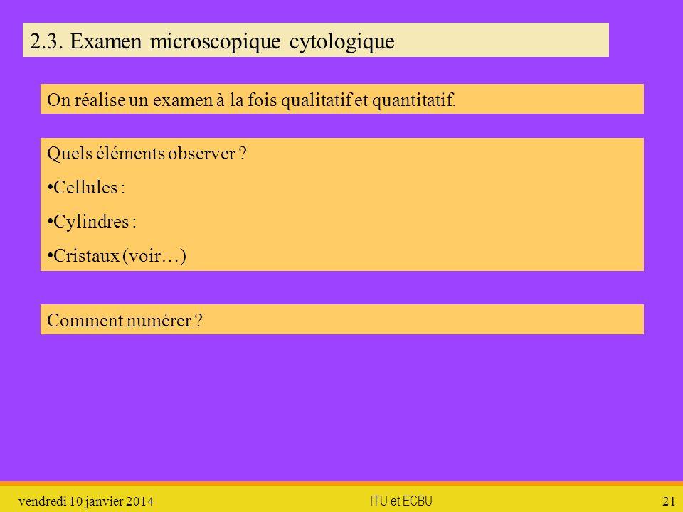vendredi 10 janvier 2014 ITU et ECBU 21 2.3. Examen microscopique cytologique On réalise un examen à la fois qualitatif et quantitatif. Quels éléments