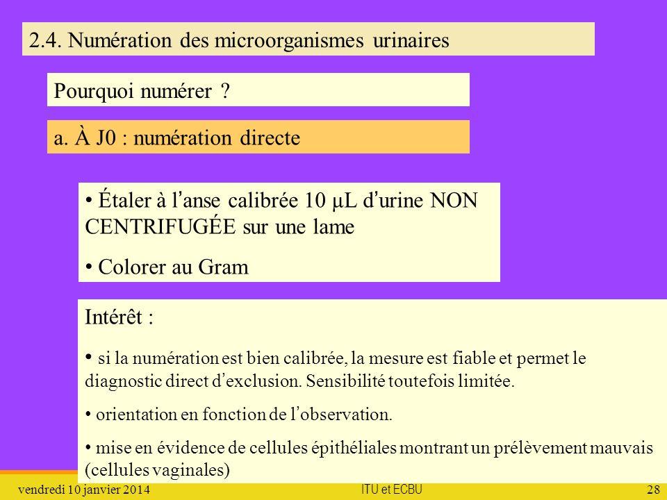 vendredi 10 janvier 2014 ITU et ECBU 28 2.4. Numération des microorganismes urinaires a. À J0 : numération directe Pourquoi numérer ? Étaler à lanse c