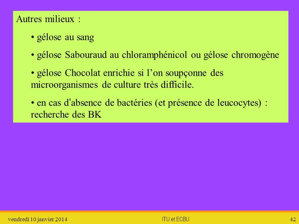 vendredi 10 janvier 2014 ITU et ECBU 42 Autres milieux : gélose au sang gélose Sabouraud au chloramphénicol ou gélose chromogène gélose Chocolat enric