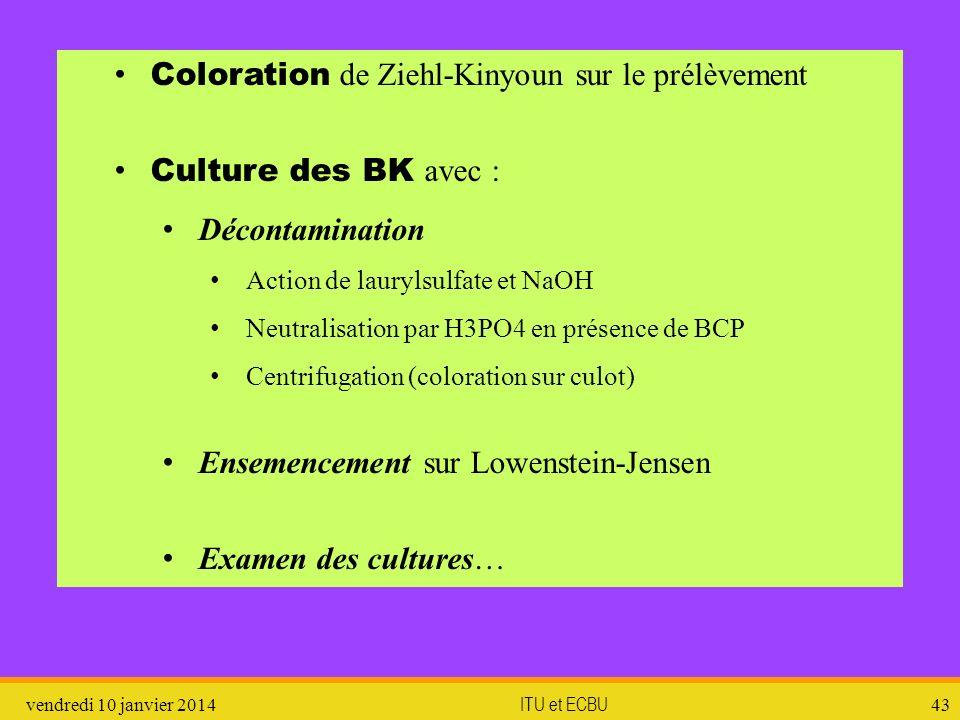 vendredi 10 janvier 2014 ITU et ECBU 43 Coloration de Ziehl-Kinyoun sur le prélèvement Culture des BK avec : Décontamination Action de laurylsulfate e