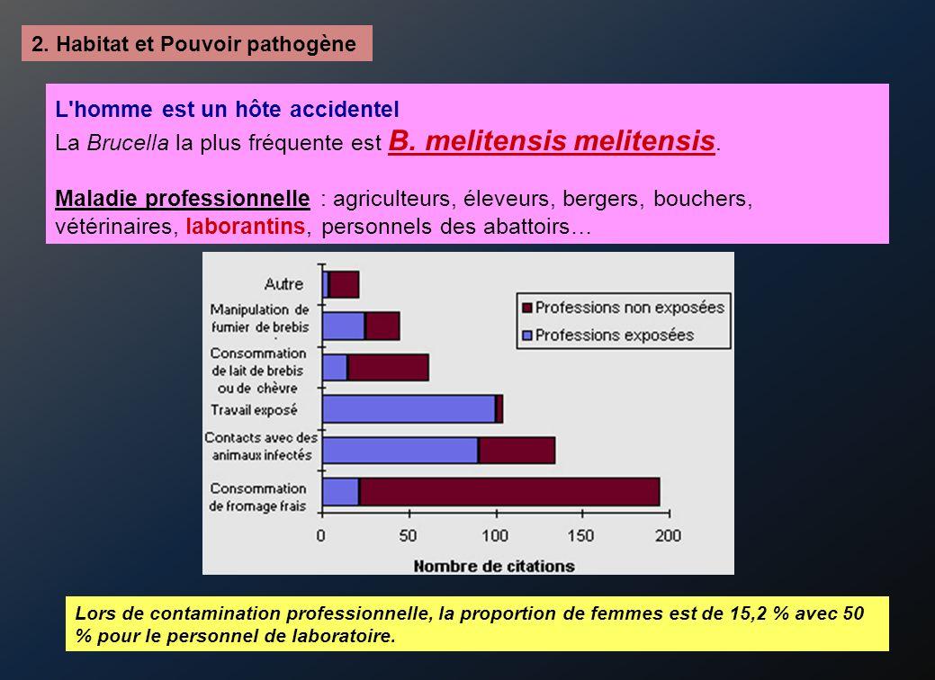 2.Habitat et Pouvoir pathogène L homme est un hôte accidentel La Brucella la plus fréquente est B.