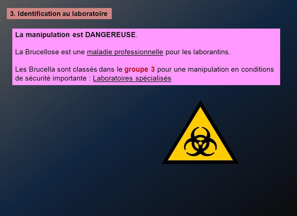 3.Identification au laboratoire La manipulation est DANGEREUSE.