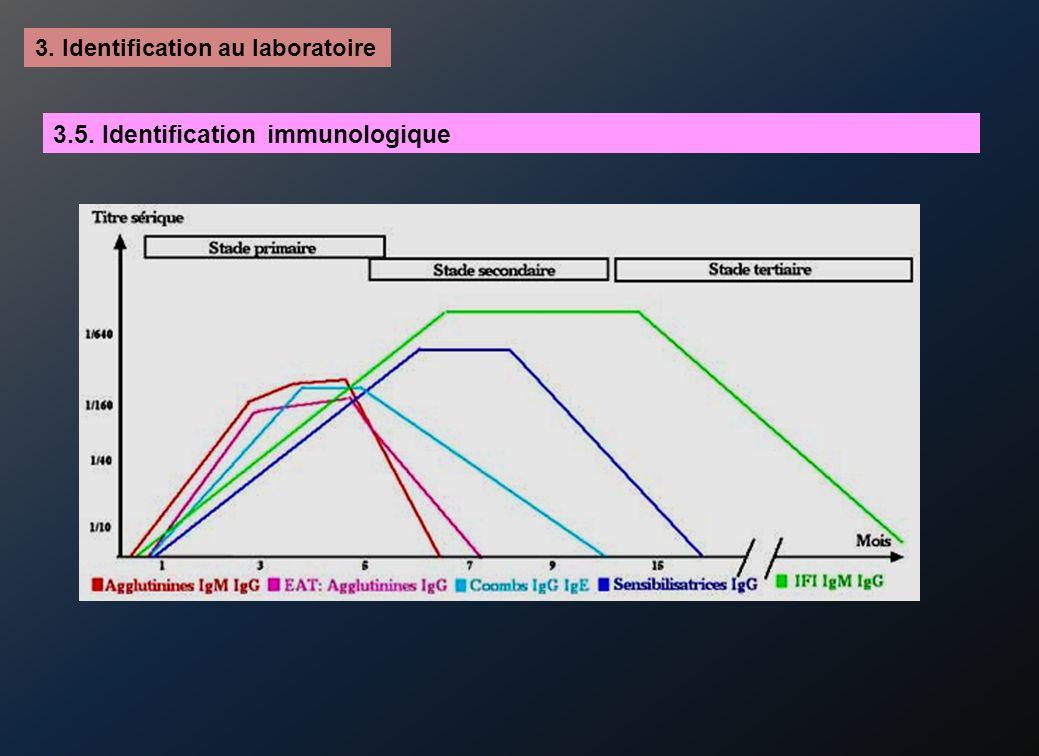 3. Identification au laboratoire 3.5. Identification immunologique