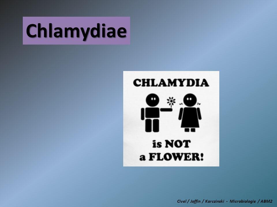 Chlamydiae Civel / Joffin / Karczinski - Microbiologie / ABM2