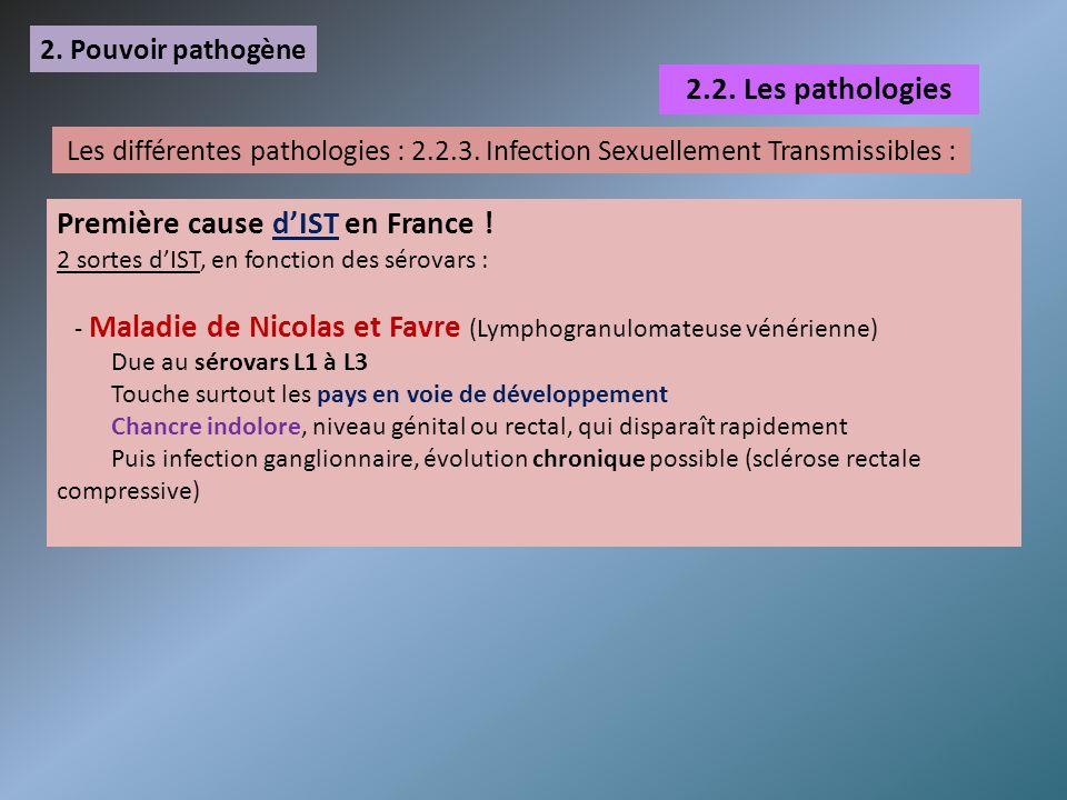 2. Pouvoir pathogène 2.2. Les pathologies Les différentes pathologies : 2.2.3. Infection Sexuellement Transmissibles : Première cause dIST en France !