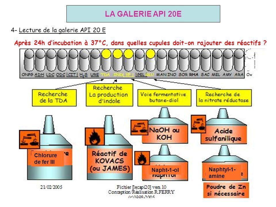 LA GALERIE API 20E 4- Lecture de la galerie API 20 E Après 24h dincubation à 37°C, dans quelles cupules doit-on rajouter des réactifs ? Napht-1-ol Nap