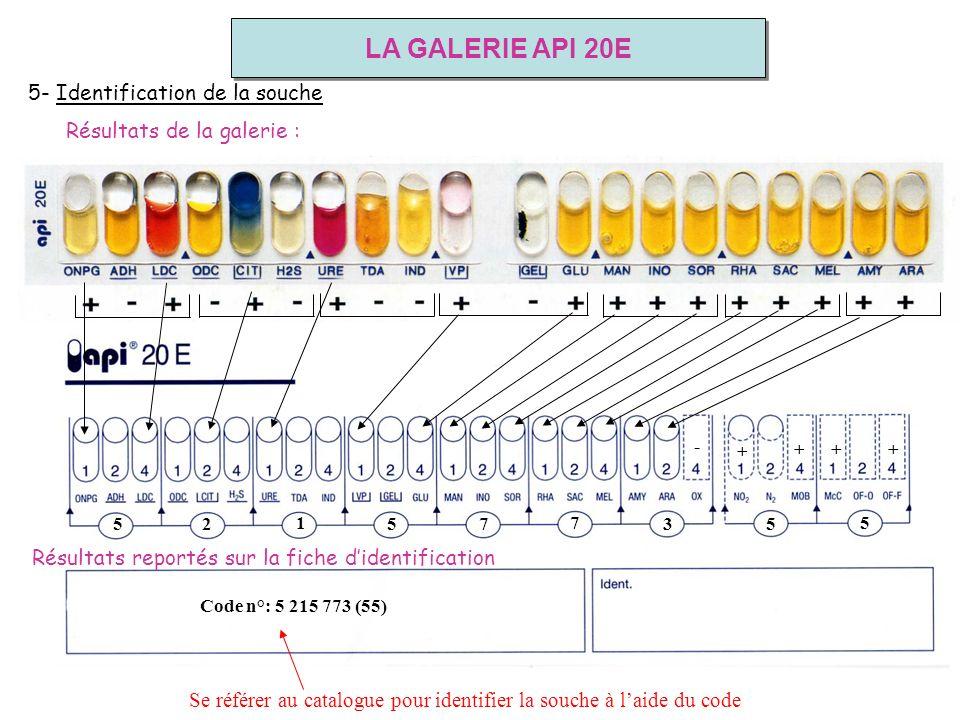 5 2 1 5 7 7 3 5 + + - Code n°: 5 215 773 (55) + + 5 5- Identification de la souche Se référer au catalogue pour identifier la souche à laide du code R