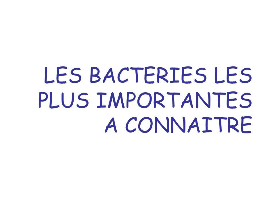 2 Les bactéries Classification simplifiée des bactéries Les bactéries des fermentations alimentaires Les associations plantes-bactéries Les bactéries pathogènes des végétaux et leur implication dans les OGM Les bactéries probiotiques Les bactéries utilisées ou potentiellement utilisables en biotechnologie Les germes daltération ou responsables de pathologies non alimentaires Les bactéries responsables de Toxi Infections Alimentaires Collectives