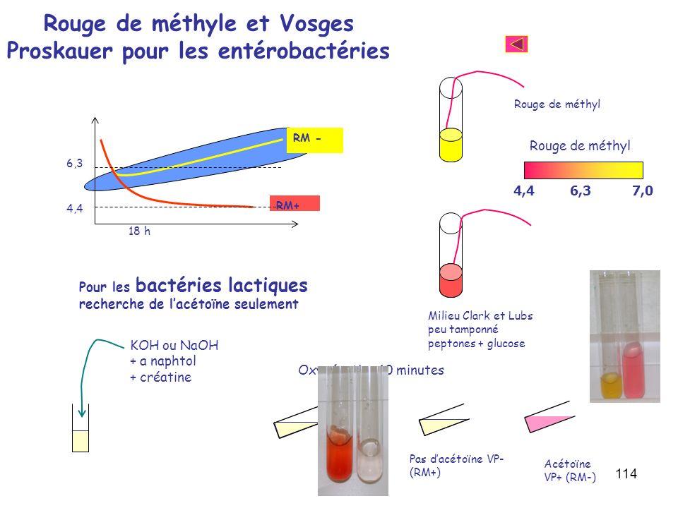 114 Rouge de méthyle et Vosges Proskauer pour les entérobactéries Milieu Clark et Lubs peu tamponné peptones + glucose Rouge de méthyl RM - RM+ 4,4 6,