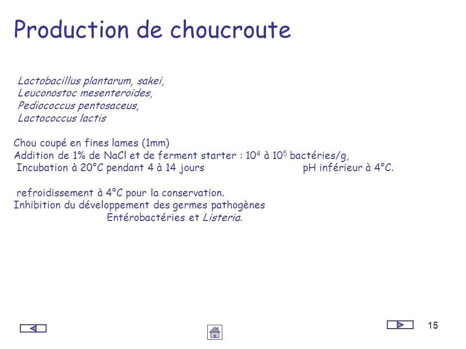 15 Production de choucroute Lactobacillus plantarum, sakei, Leuconostoc mesenteroides, Pediococcus pentosaceus, Lactococcus lactis Chou coupé en fines