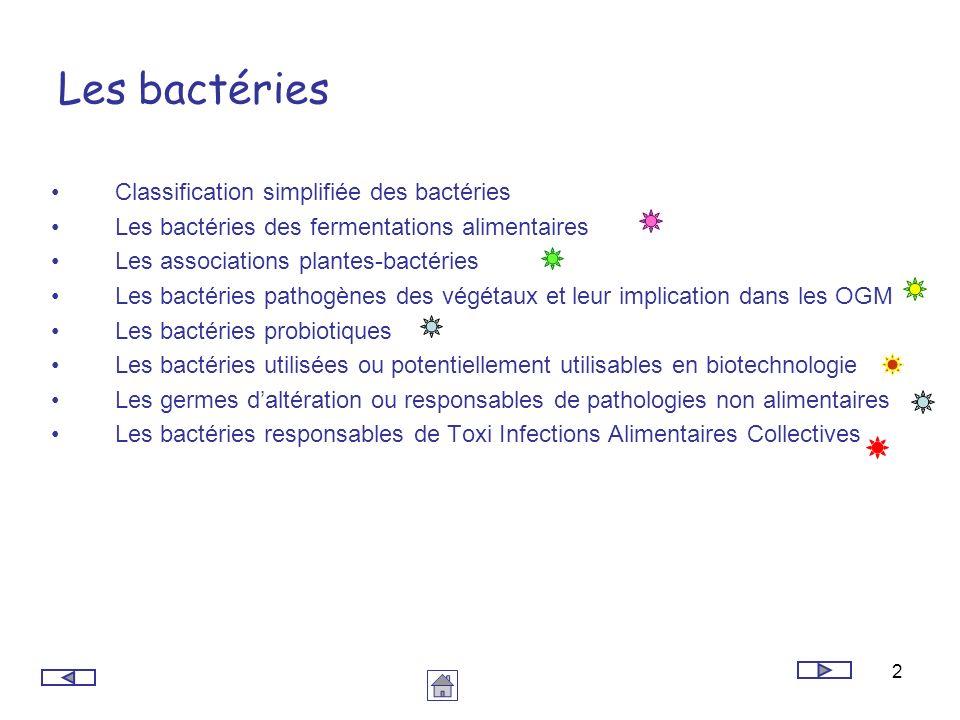 2 Les bactéries Classification simplifiée des bactéries Les bactéries des fermentations alimentaires Les associations plantes-bactéries Les bactéries