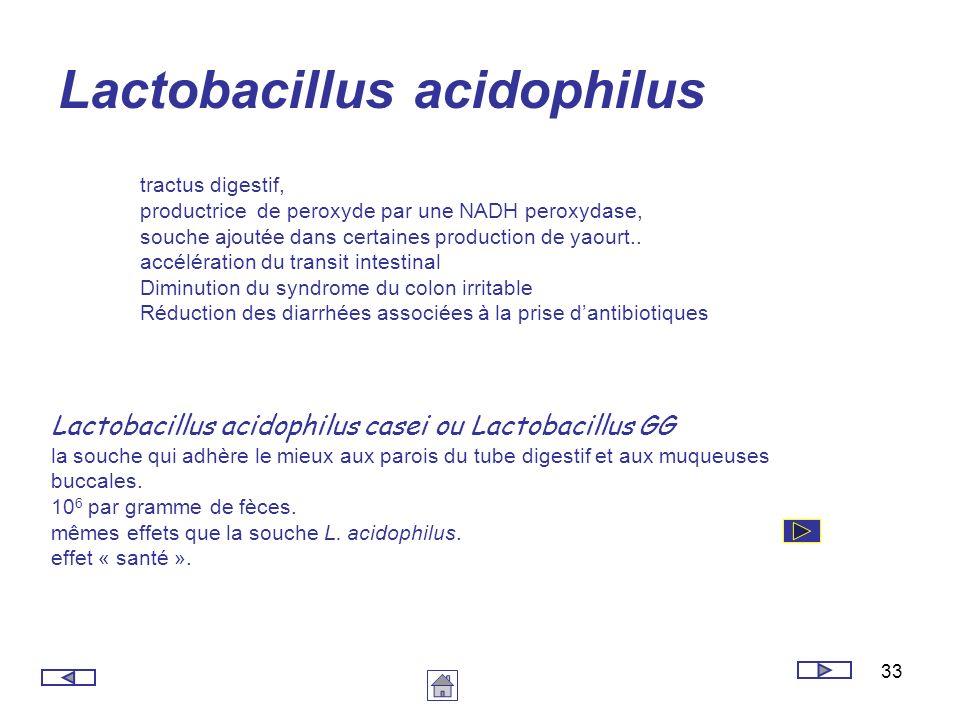 33 Lactobacillus acidophilus tractus digestif, productrice de peroxyde par une NADH peroxydase, souche ajoutée dans certaines production de yaourt.. a
