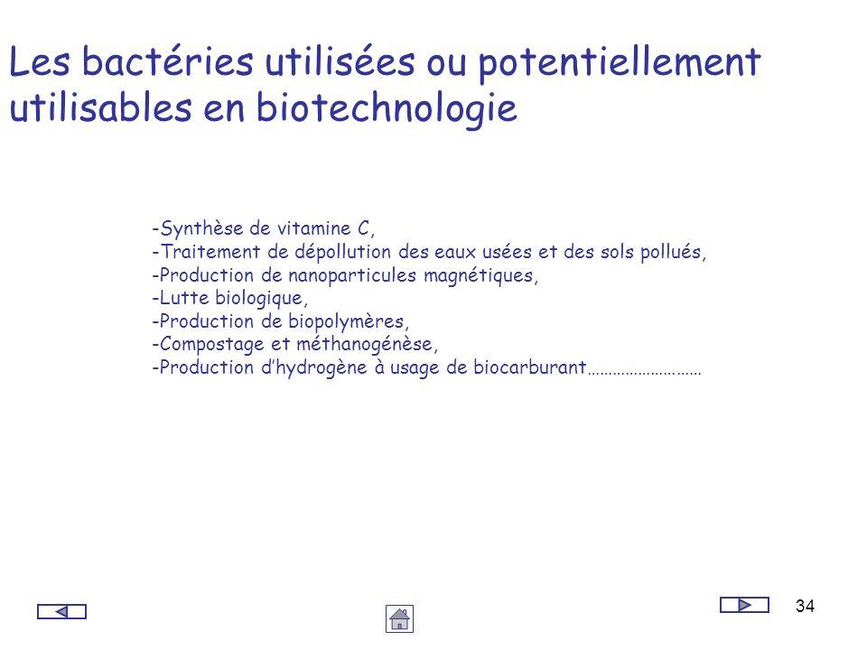 34 Les bactéries utilisées ou potentiellement utilisables en biotechnologie -Synthèse de vitamine C, -Traitement de dépollution des eaux usées et des