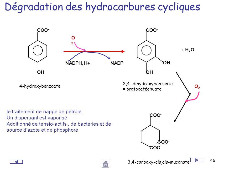 45 Dégradation des hydrocarbures cycliques le traitement de nappe de pétrole. Un dispersant est vaporisé Additionné de tensio-actifs, de bactéries et