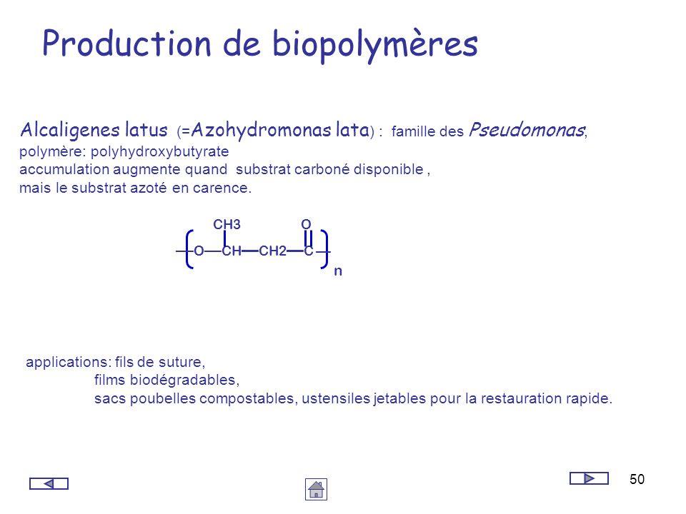 50 Production de biopolymères Alcaligenes latus (= Azohydromonas lata ) : famille des Pseudomonas, polymère: polyhydroxybutyrate accumulation augmente