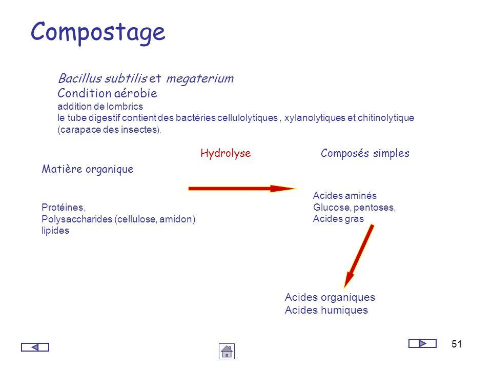51 Compostage Bacillus subtilis et megaterium Condition aérobie addition de lombrics le tube digestif contient des bactéries cellulolytiques, xylanoly
