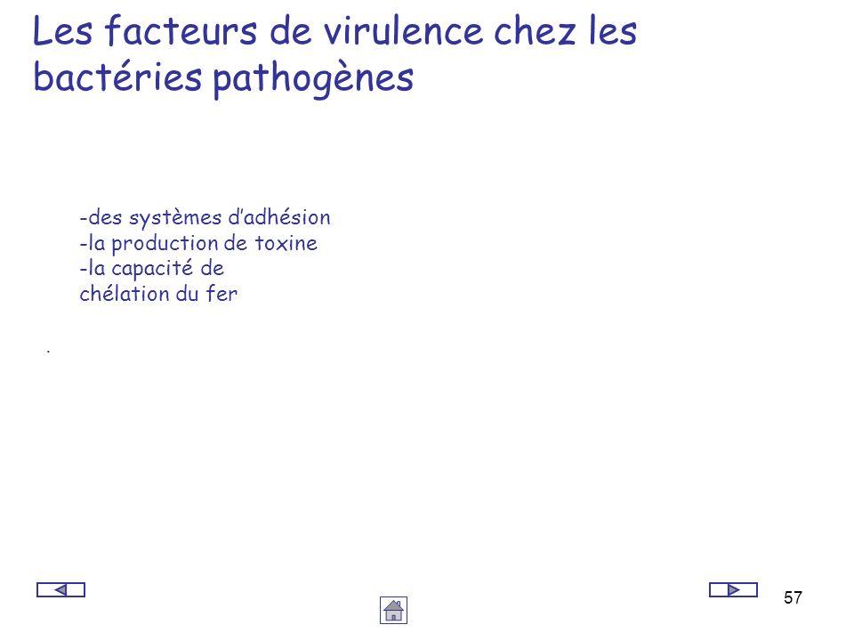 57 Les facteurs de virulence chez les bactéries pathogènes -des systèmes dadhésion -la production de toxine -la capacité de chélation du fer.