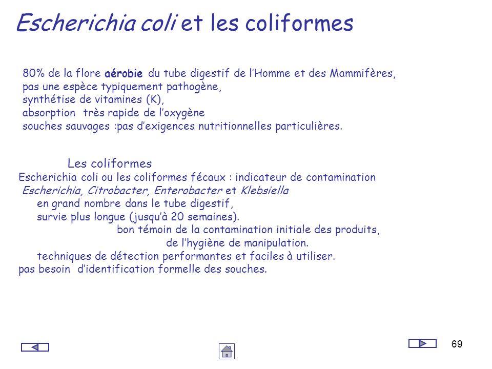 69 Escherichia coli et les coliformes 80% de la flore aérobie du tube digestif de lHomme et des Mammifères, pas une espèce typiquement pathogène, synt